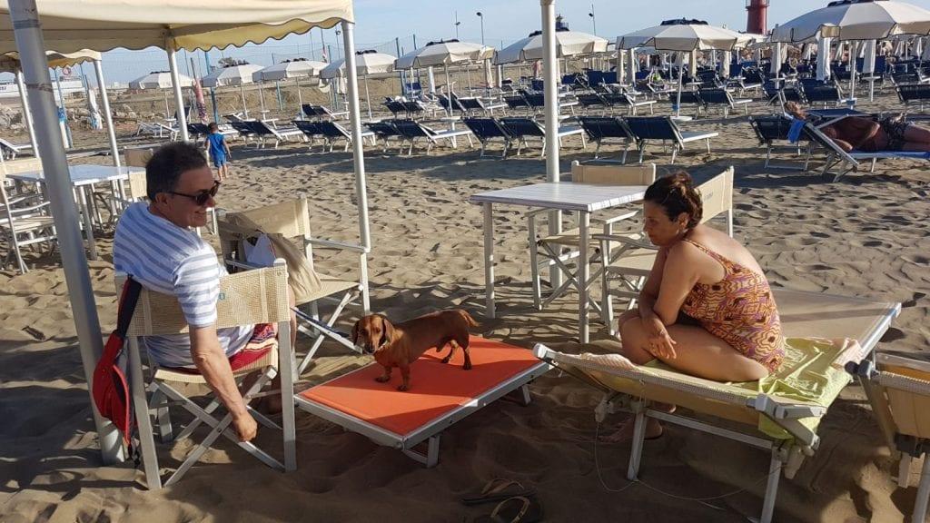 Vacanze Castiglione della Pescaia | Bagno il Faro | Vacanze con i vostri amici a 4 zampe